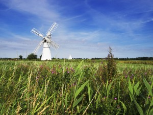Windmill at the River Thurne