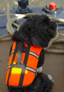 Don't forget the pet friendly boats on the UK Canals too!