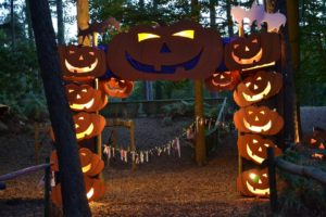 Bewilderwood Pumpkins