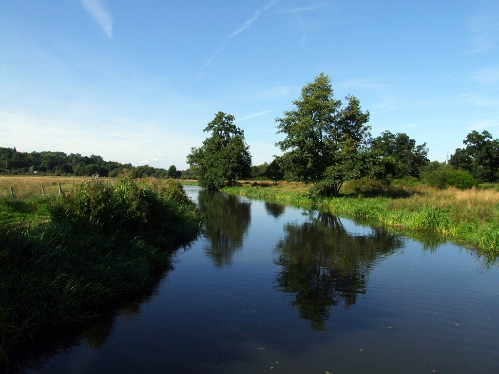 St Catherines Cut - River Wey