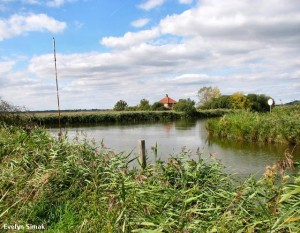Views of the River Waveney